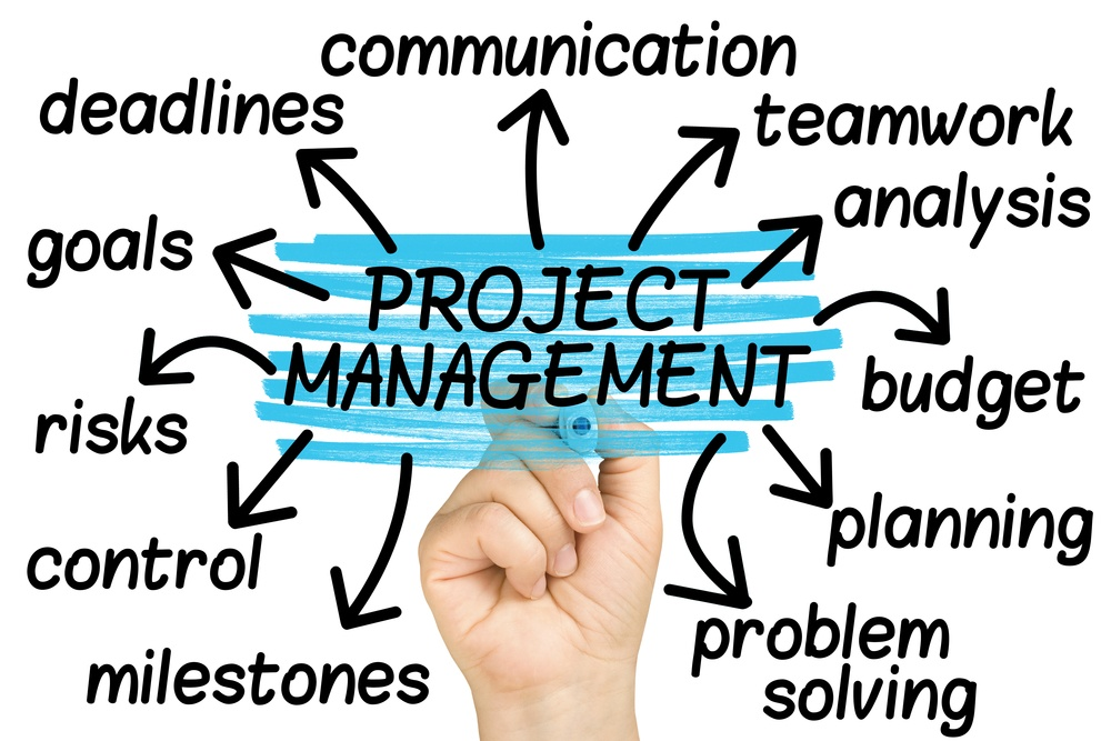 new-website-project-management-dubai.jpg