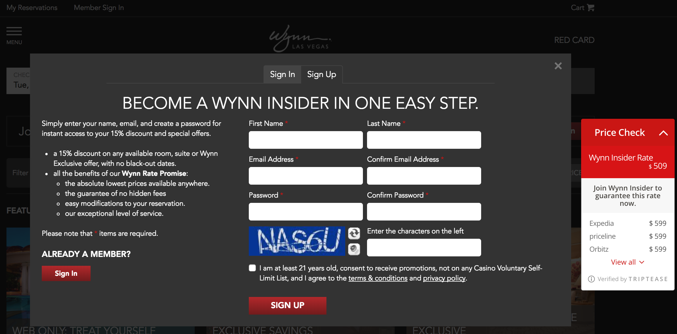 Wynn Digital Marketing Strategy