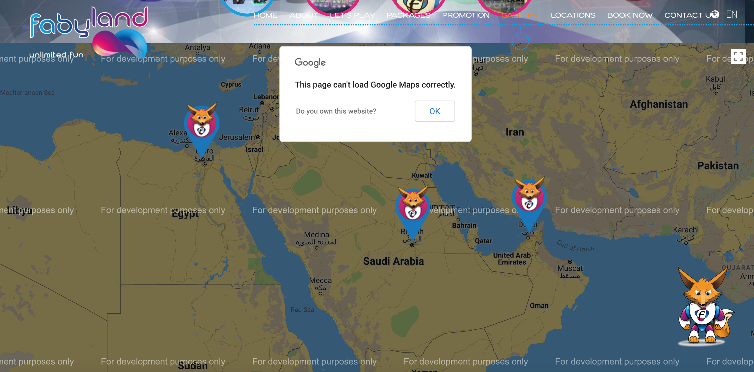 Google Map Website